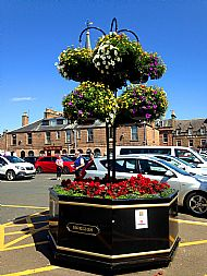 Large octagonal planter in Market Square -- 17 July 2017. Photo by Julie Lomax.