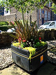 Planter on High Street -- 17 July 2017.  Photo by Julie Lomax.