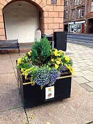Planter on the plainstones in Market Square -- 17 September 2017.  Photo by Julie Lomax.
