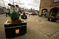 Market Square planters -- 05 July 2019.  Photo by Martin Sim.