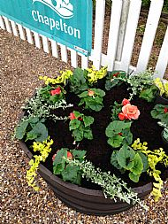 A Station barrel planted with fresh Summer bedding plants -- 28 May 2019.  Photo by Julie Lomax.