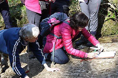 measuring dips/strikes in great scar limestone