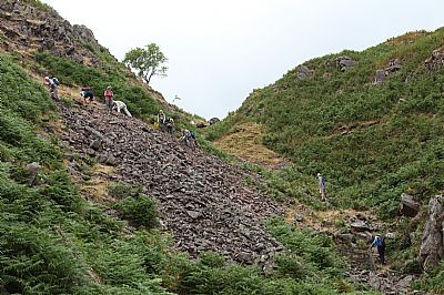 looking for hematite in the nab gill mine spoil heaps