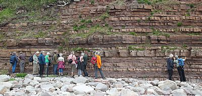 heysham coastal section namurian sandstones
