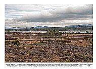 Loch Ashie with 7 turbines 50mm