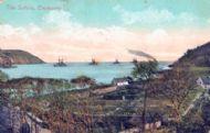1908 garden with Navy ships