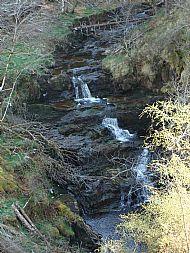 Arnsalloch Glen