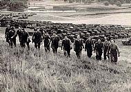 CASTLE POLICIES, 1940's