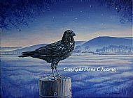 FYRISH CROW
