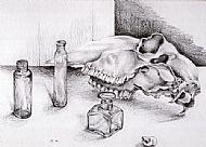 Skull and Bottles