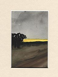 Grey Skies over a Yellow Field