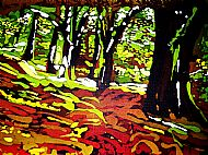 Dalival Beech Woods