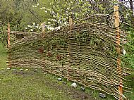 willow and hazel screen