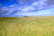 Aberdeenshire Farmland
