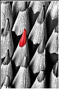 'Pencils' Simon Larson