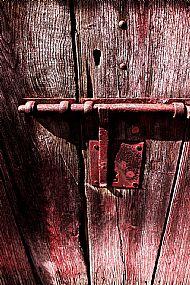 'Red Door'  Kyla Orr