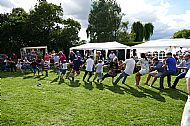 The Annual Tug of War