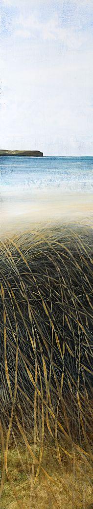 Skaill Grasses