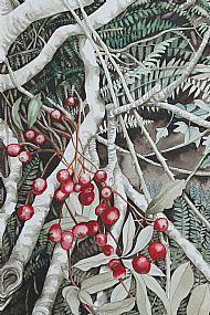 Rowan Berries, Orphir