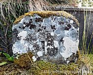 The Lichen Cross