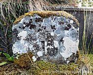 The Lichen Cross