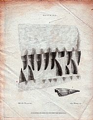 Print 19