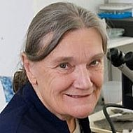 professor dianne edwards