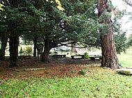 st regulus' graveyard