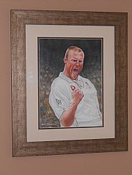 framed andrew flintoff by david paterson