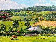 Rural Banffshire Scene