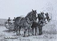 Horse drawn binder