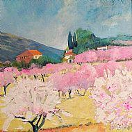 Almond Blossom Alcalili