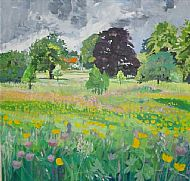 Buttercups in the park Cranford