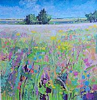 Wild flower meadow, Brancaster Staithe