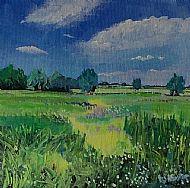 Warmington meadows, Northants