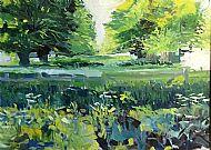 Drayton Park Lime Trees