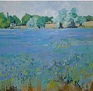 Linseed Field Aldwincle