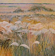 Shore breeze in the marsh reeds