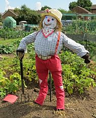 Winning Scarecrow for over 12 -