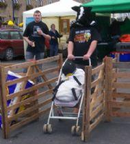 Kev & Craig, doing Blind Human Sheep Dog Trial.