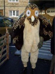 Gorgeous the Owl