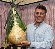 Hall of Fame - World Champion Onion 2007 - The Onion is on the left