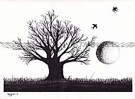 Tree Ink Drawing 1 Ltd Ed  (TS AW 03)