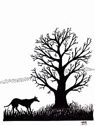 Ink Tree Drawing 3