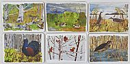 set of six endangered species table mats