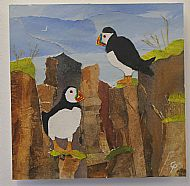 puffins - wildlife collage