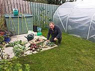 CELL COMMUNITY ALLOTMENT