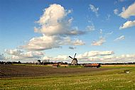 The 'Schermer' polder with windmills