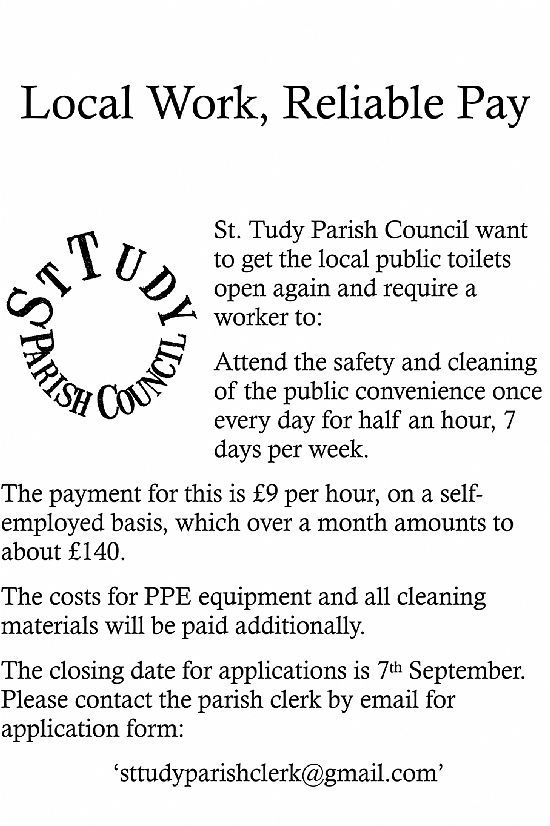toilet cleaning in st tudy