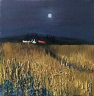 Late summer night, Black Isle